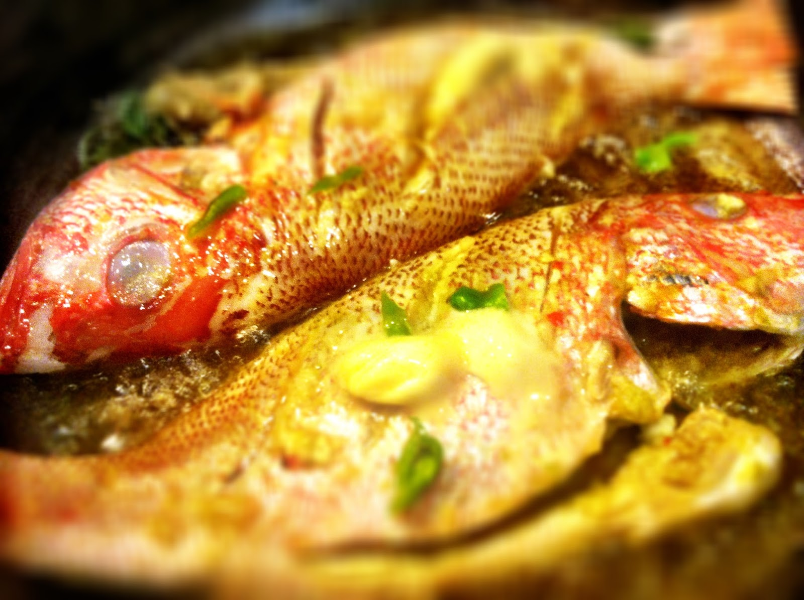 On good friday haitians eat fish l 39 union suite - Poisson image ...