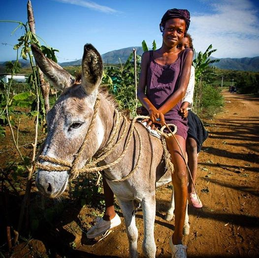 haitian girl on donkey